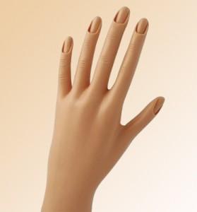 mannequin-hand