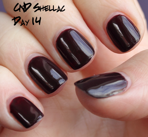 cnd shellac wear test day 14 Introducing CND Shellac Hybrid Nail Color