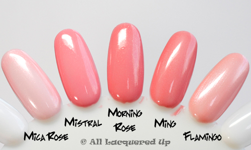 chanel morning rose swatch comparison 2 ALUs 365 of Untrieds   Chanel Morning Rose