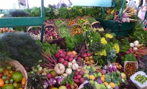 veggie-u-chefs-garden-cvi-veggies