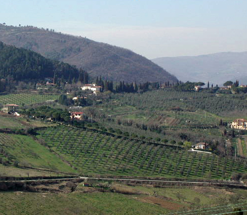 Hillside in Tuscany